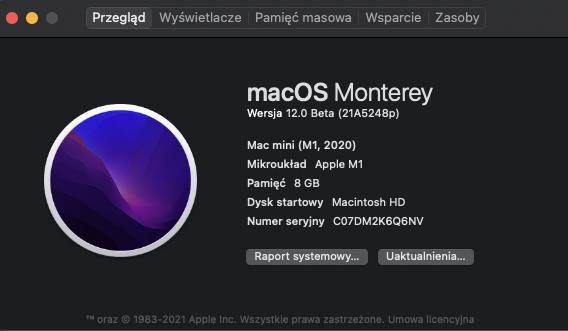 Zrzut ekranu 2021-06-23 o 21.08.09